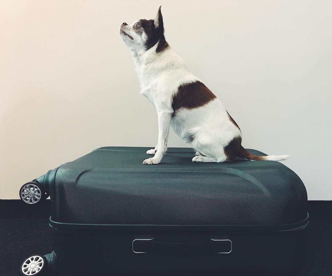 packing tricks
